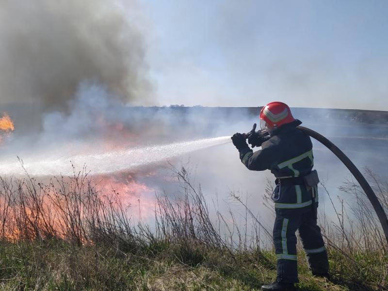 На Киев движется загрязненный пожаром воздух из Чернобыльской зоны