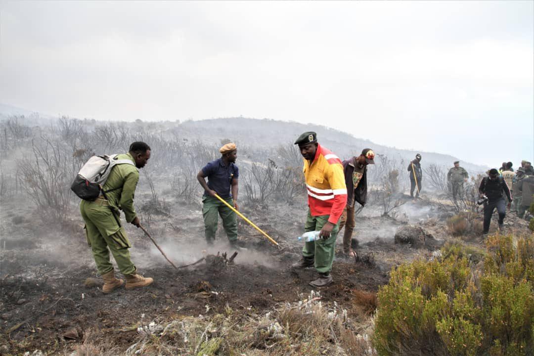 В Танзании третий день гасят пожар на Килиманджаро, вспыхнувший из-за ту...