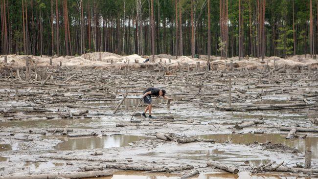 В Житомирской области наметили 200 участков для легальной добычи янтаря