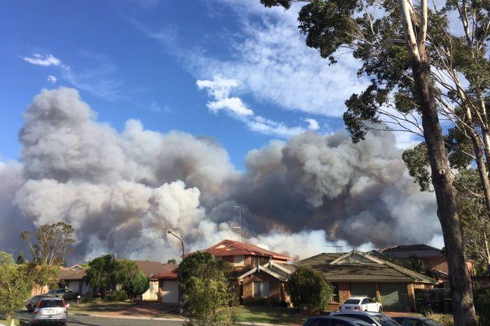 На Сидней наступает масштабный лесной пожар