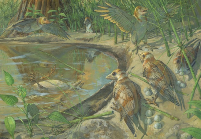 В Китае нашли останки беременной птицы возрастом 115 миллионов лет