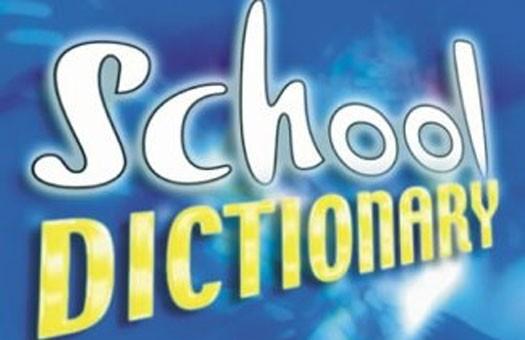 Министры Януковича владеют иностранными языками «со словарем»