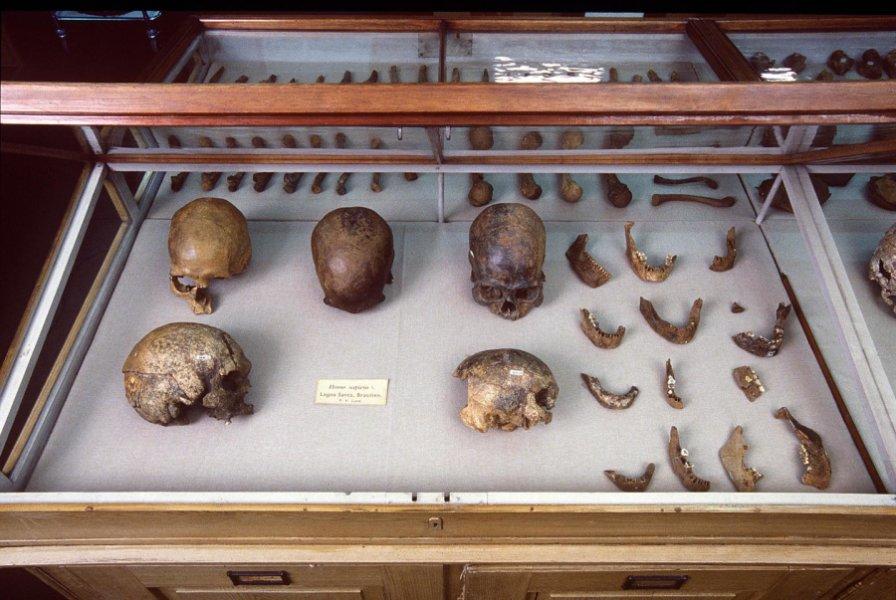 Древнейшую мумию Нового Света перезахоронили индейцы
