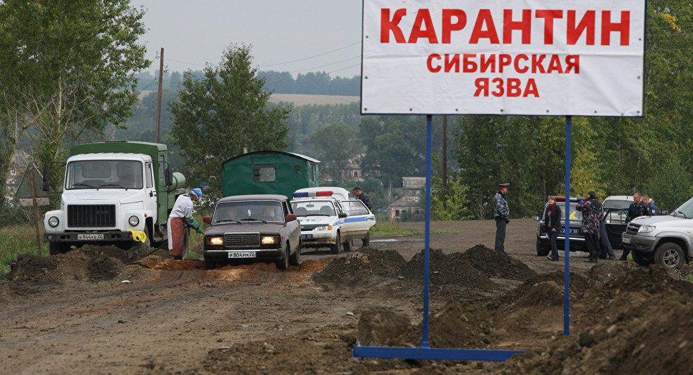 На Ямале 90 человек госпитализированы с подозрением на сибирскую язву