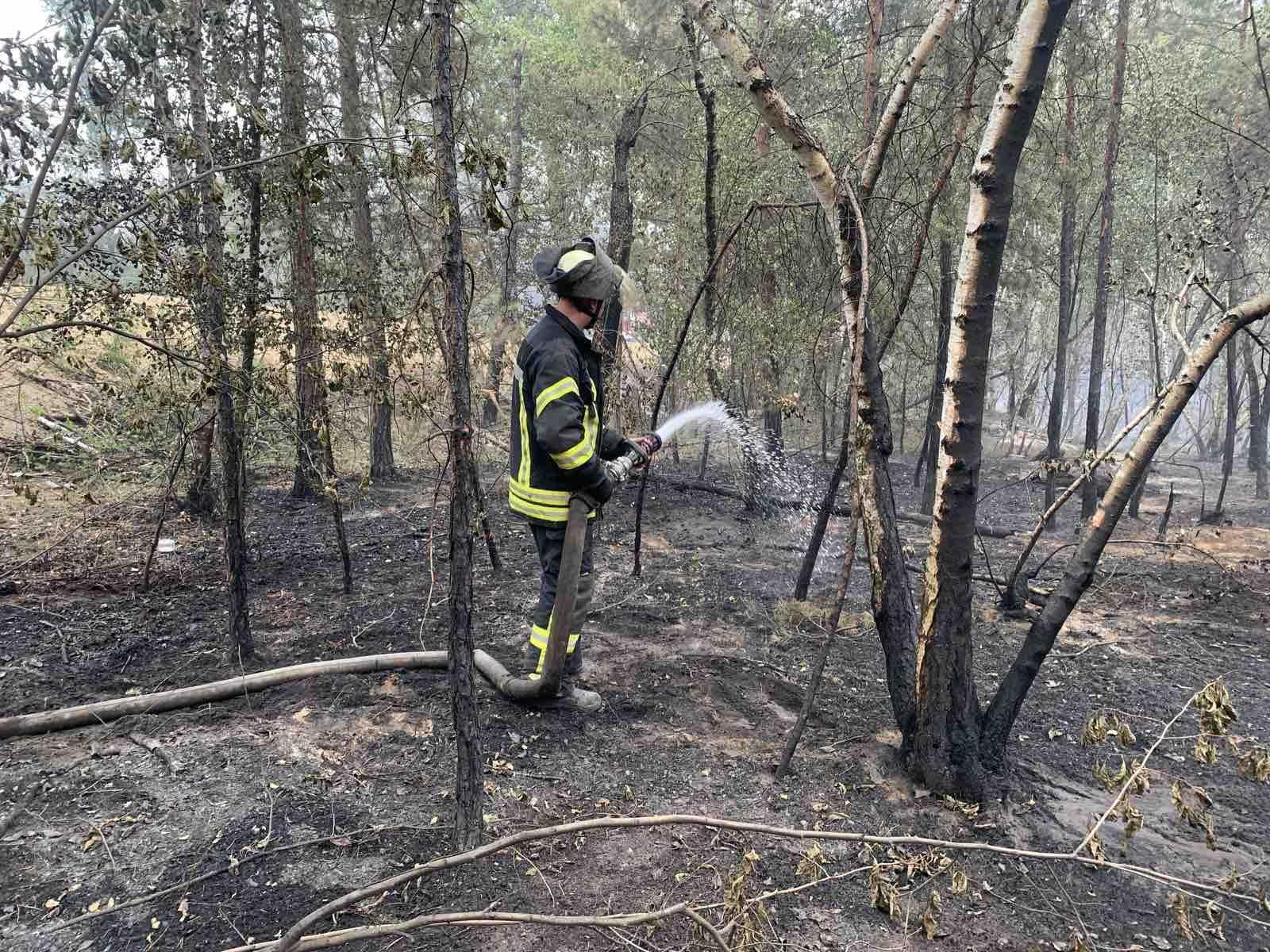 Полиция нашла виновника пожара на Луганщине