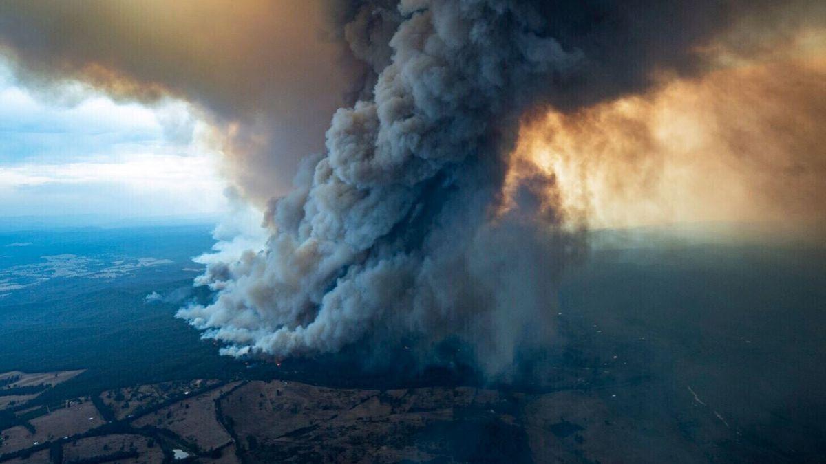В столице Австралии объявили чрезвычайное положение из-за сильных пожаро...