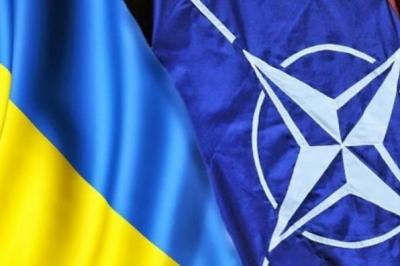 У Зеленского предложили отказаться от вступления в НАТО