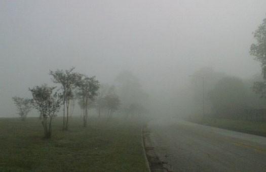 Погода на завтра, 25 ноября