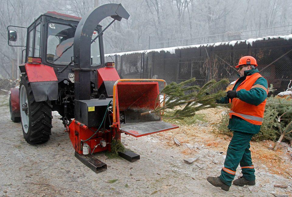 Киевляне сдали рекордное количество елок на переработку