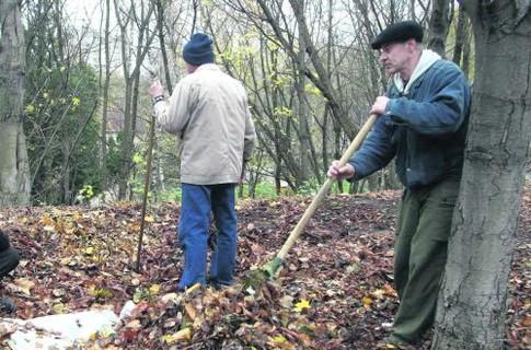 12 киевских дворников, сжигающих листья, привлекли к ответственности