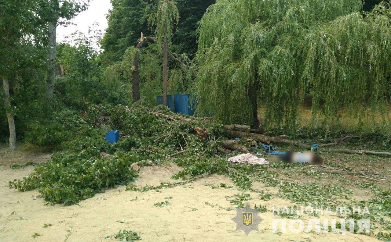 На базе отдыха возле Харькова на трех отдыхающих упало дерево