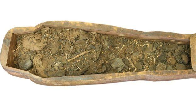 В австралийском музее нашли мумию в саркофаге, привезенном 150 лет назад...
