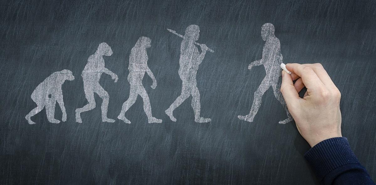 Маркеры эволюции. Новые свойства рудиментов человека