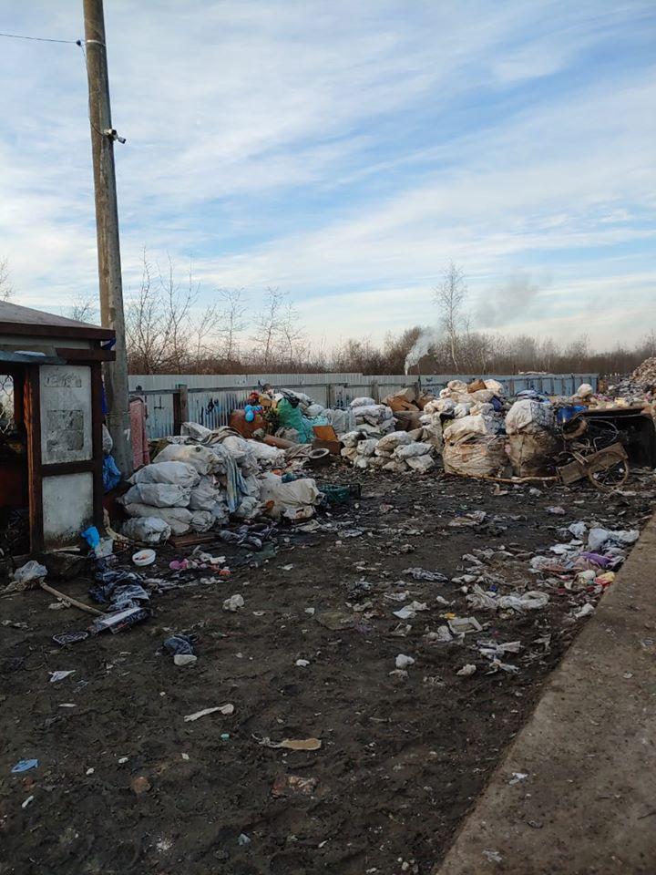 свалка в дрогобыче, мусор, фото