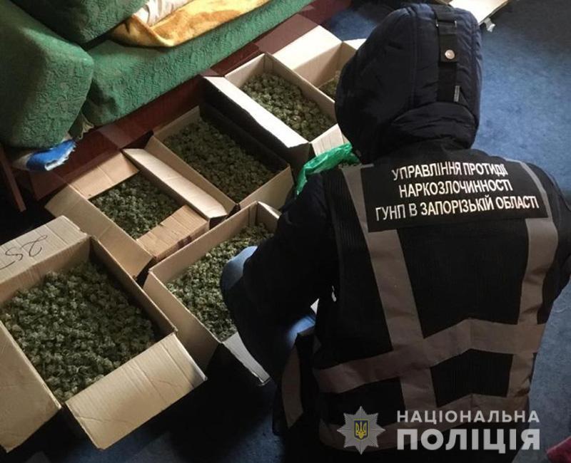 """В Запорожской области у мужчины изъяли 7 кг """"шишек"""" на 700 тысяч гривен"""
