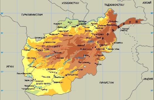 В Афганистане от свиного гриппа умерло 10 человек за полторы недели