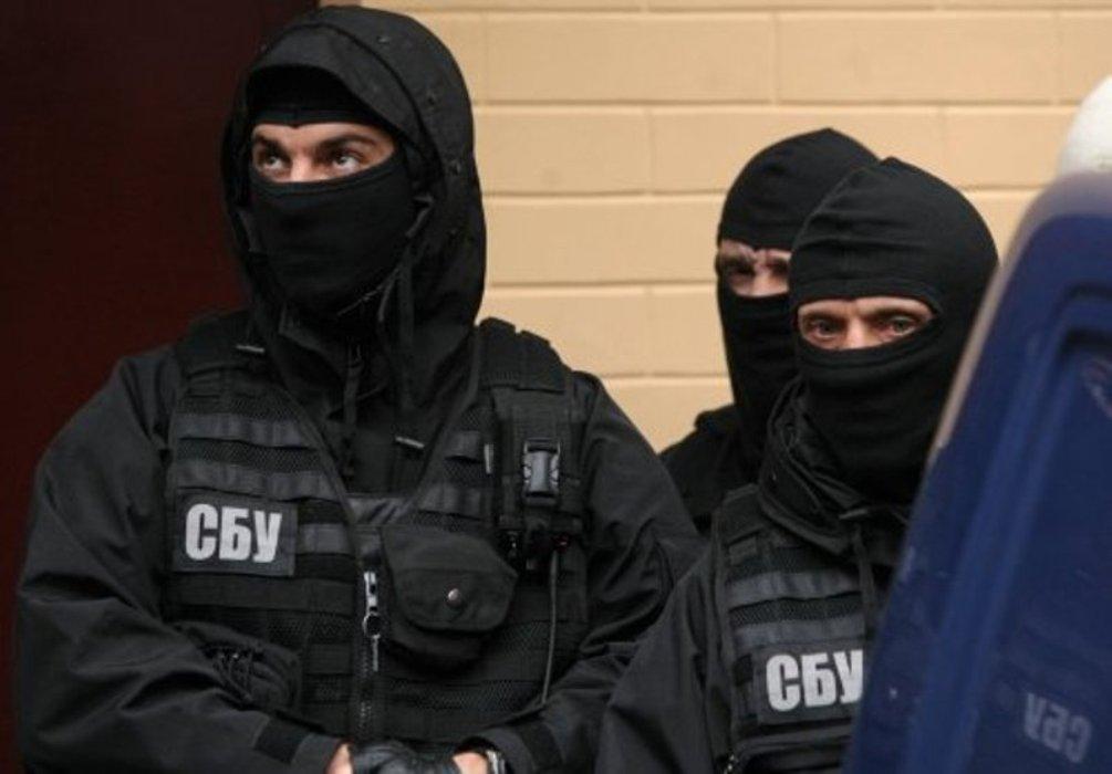 СБУ установила связь блогера Бердник с московскими кураторами