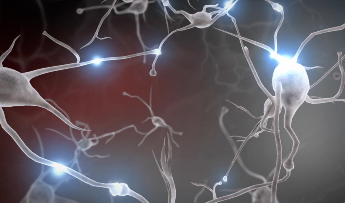 Без нейрочипа в мозге. Ученые создали молекулы восстанавливающие нейронн...