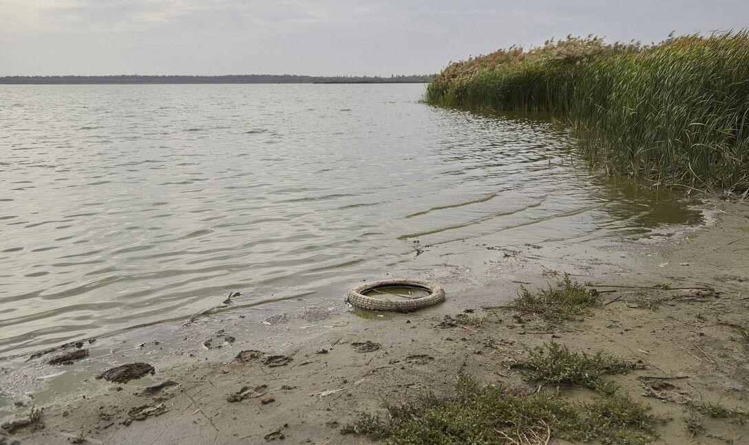 забруднення річок, сміття, берегова смуга