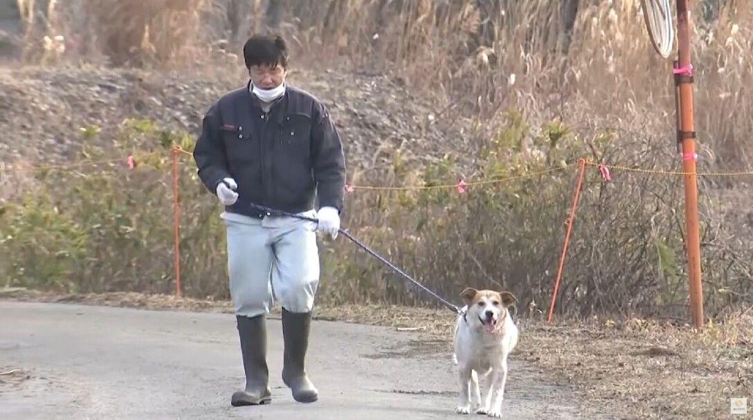 Сакаэ Като и пес Почи