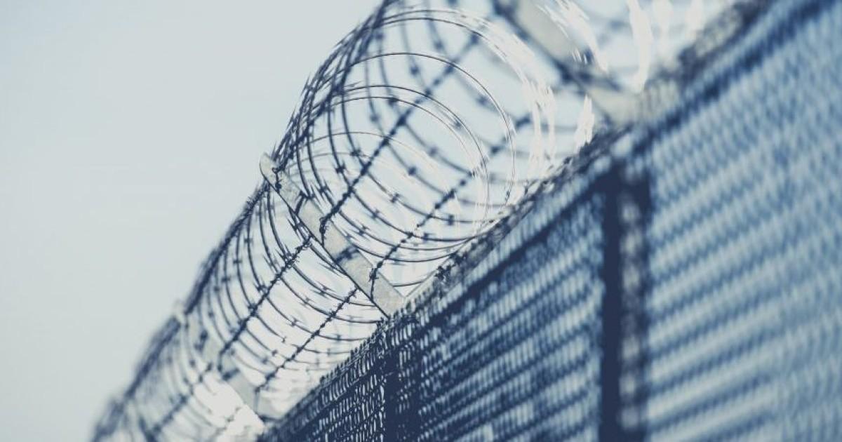 В Литве два нелегальных мигранта осуждены за незаконное пересечение границы