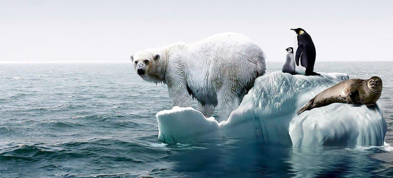 Глобальне потепління і всесвітній потоп