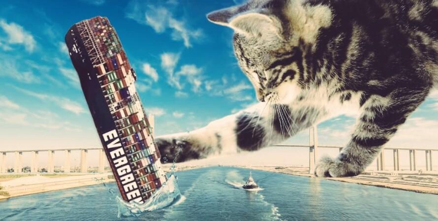 Контейнеровоз в Суэцком канале, кот