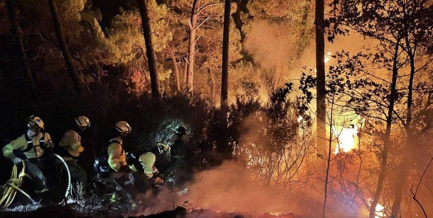 В Испании из-за мощного пожара пришлось эвакуировать 500 человек (фото,  видео)