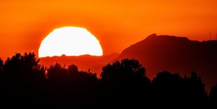 жара, Солнце, деревья, фото
