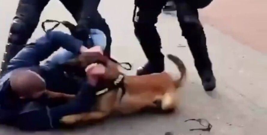 Нидерланды, Гаага, COVID-протест, митингующие, полиция, разгон, собаки,