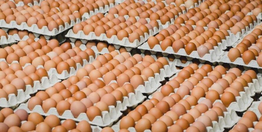 яйца, подорожание, инфляция, фото, январь, госстат