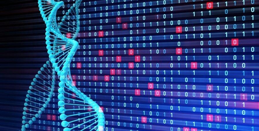 ДНК, код, кодування, файли, дані