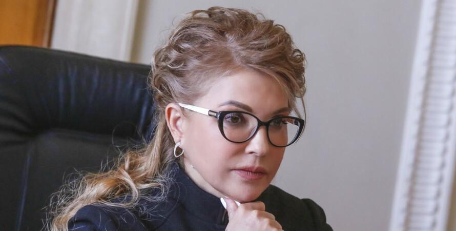 Юлия Тимошенко, Батькивщина, декларация, доходы, 2020 год,