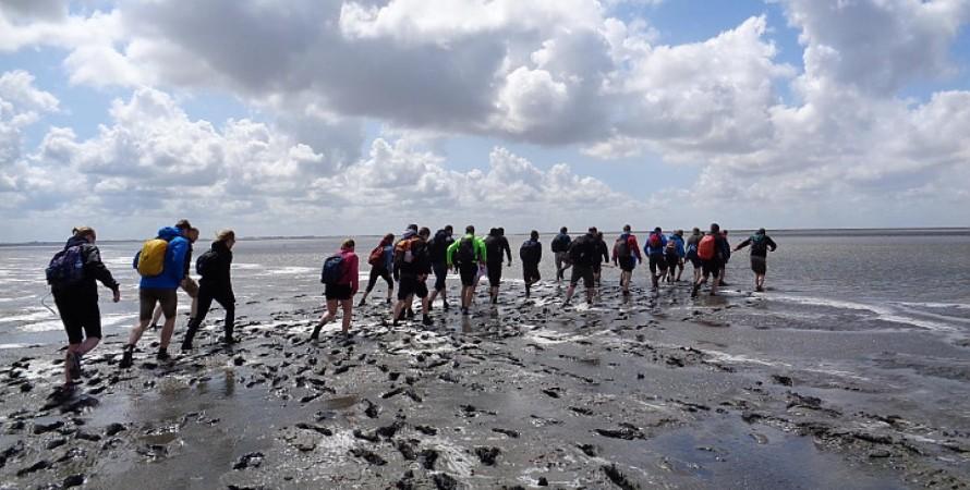 Ваттове море, люди, туристи, фото