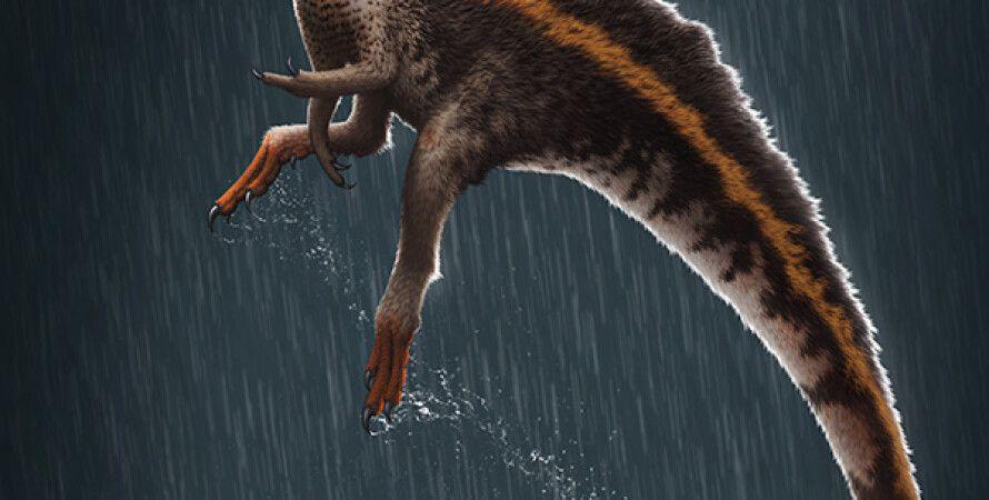динозавры, Бразилия, шипы