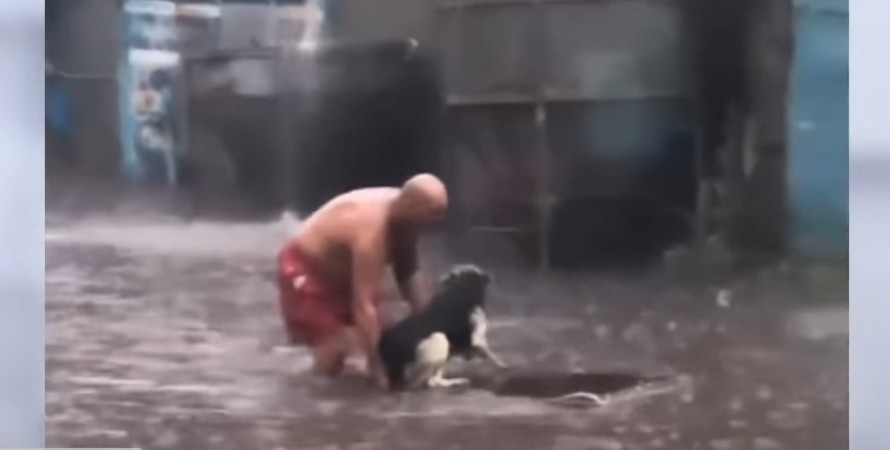 охранник, собака, спасение,