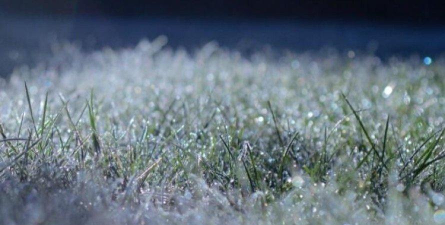заморозки, украина, прогноз погоды, погодные условия