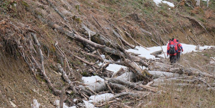 карпаты, магура-жиде, жид магура, горы, пропавший турист