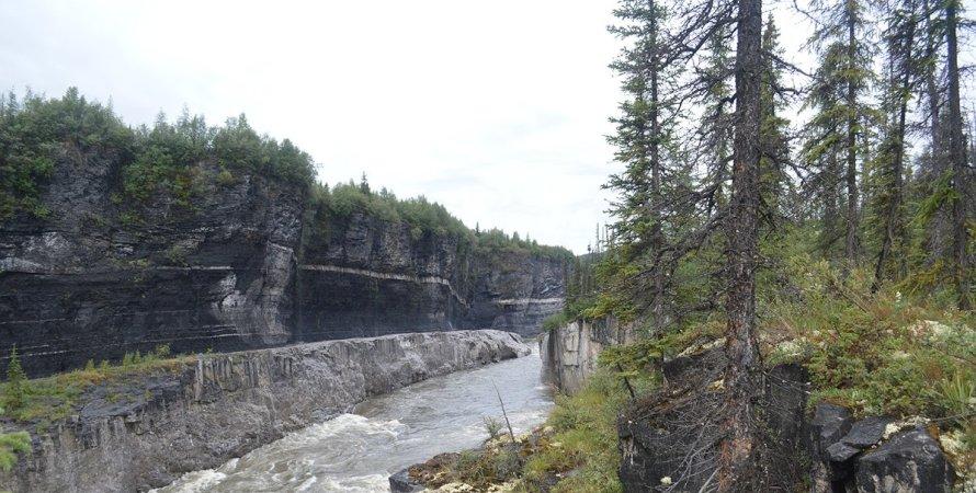 річка Піл, дерева, природа, фото
