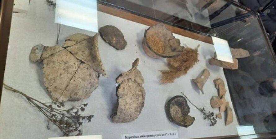 Дніпро, артефакти, скарб, знахідка, монети, Укравтодор, траса, розкопки