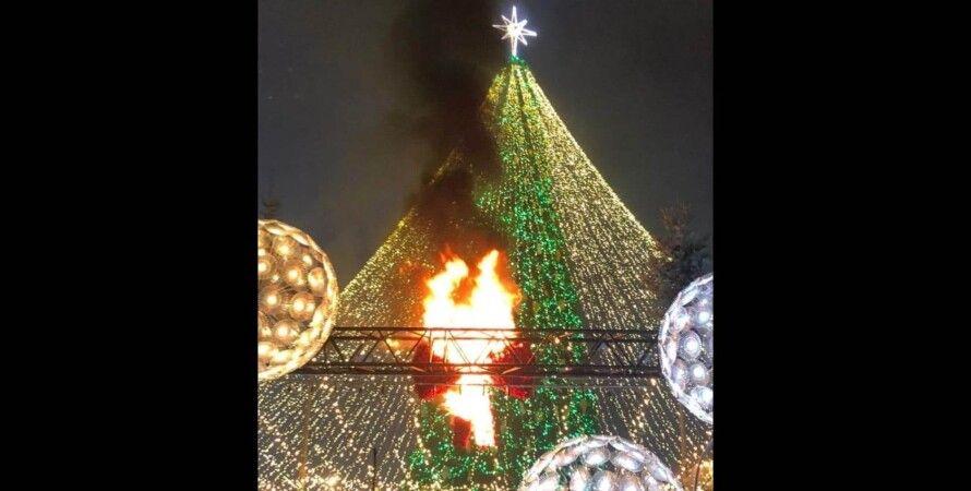 софийская, елка, огни, кличко, новогодняя, главная ель