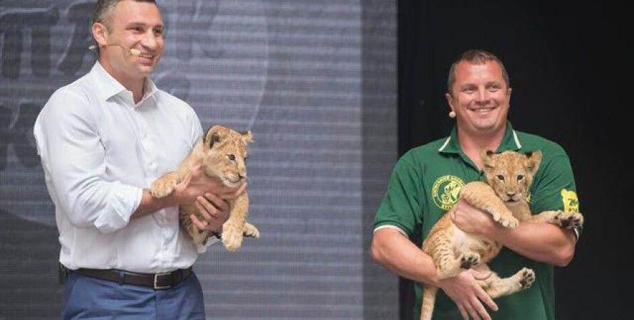 В Киеве появится зоопарк без клеток / Фото: пресс-служба КГГА