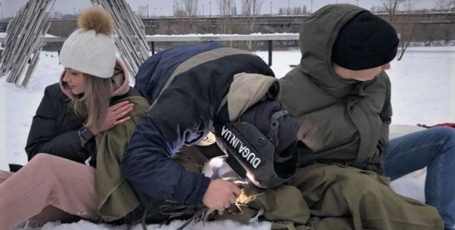пара, цепь, рекорд Украины, День влюбленных