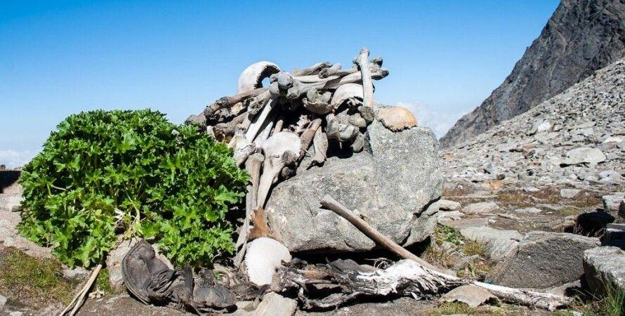 кости, скелет, люди, озеро