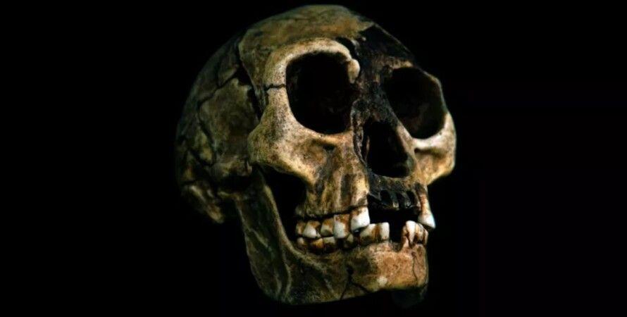 гобіти, стародавні люди, Homo Sapiens, Homo floresiensis, вимерлий вид