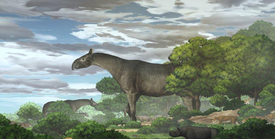 гигантский носорог, природа, небо, деревья, рисунок