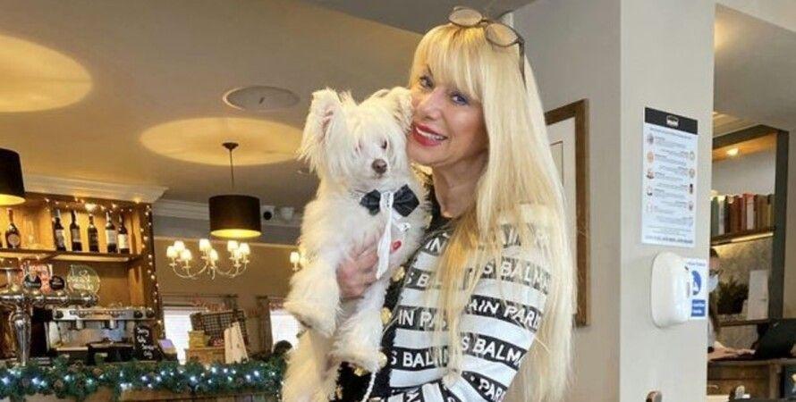Алиса Торн, собака, подарки