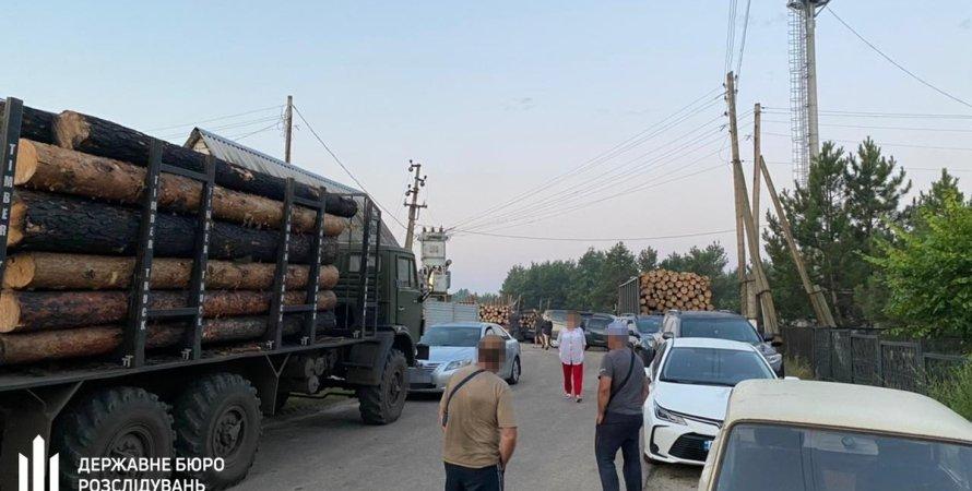 ГБР, спецоперация ГБР, обыски ГБР, древесина, продажа древесины