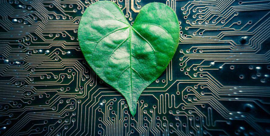 Фото: MIT