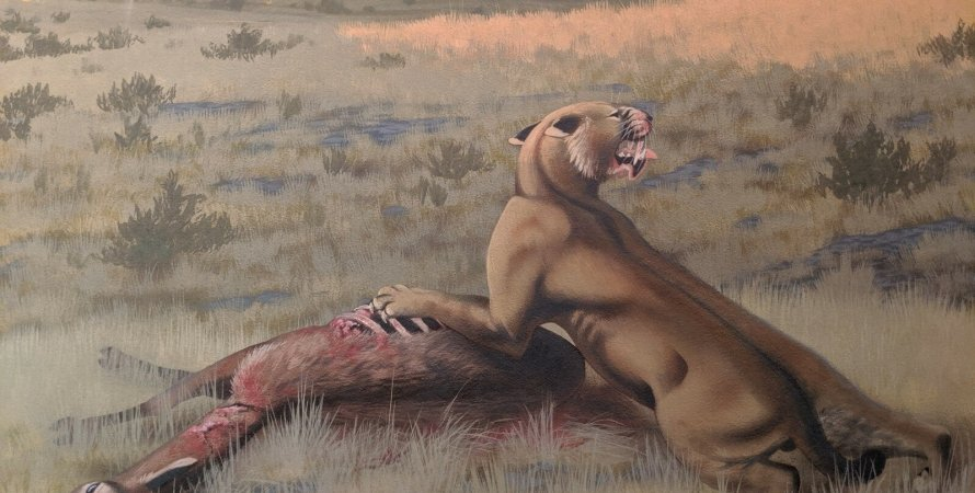 саблезубая кошка , охота, жертва, кровь, фото
